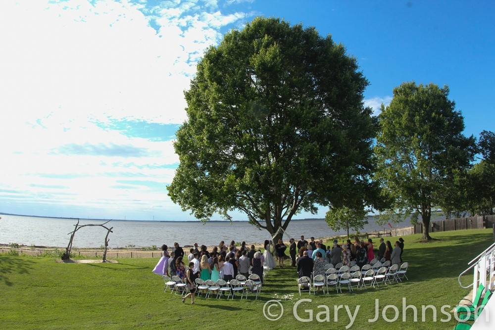 Ongoing outdoor wedding next to big trees with blue skies